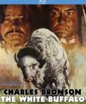 whitebuffalo